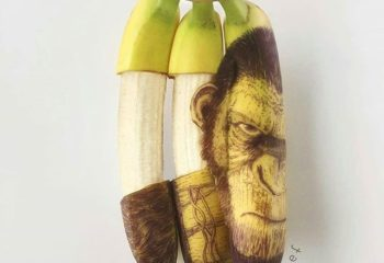 Banana Art by Stephen Bruche