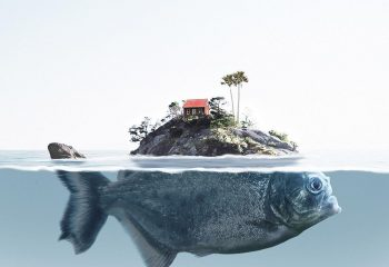Nature and animals photo manipulation by Jabid Arsalan