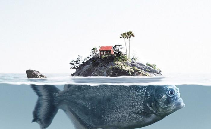 Nature and animals photo manipulation by Jabid Arsalan